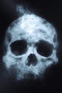 skull-1612504_1280