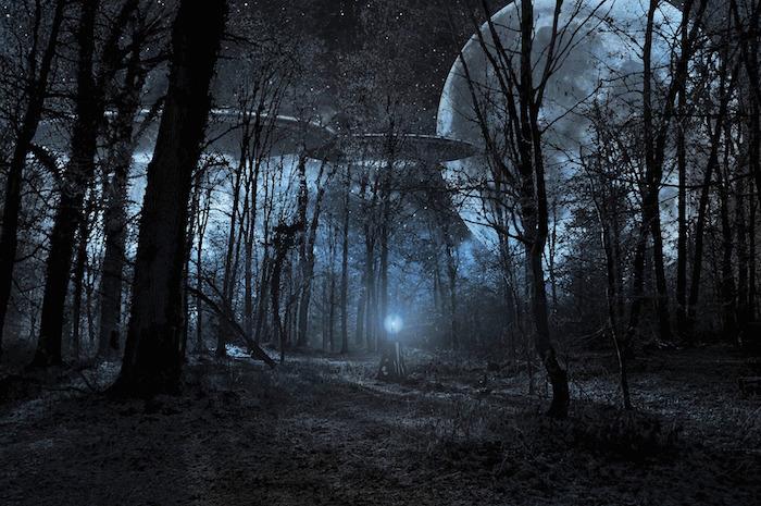 UFONightForest