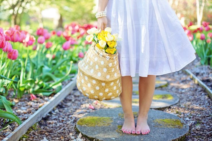 barefoot-basket-blooming-413707