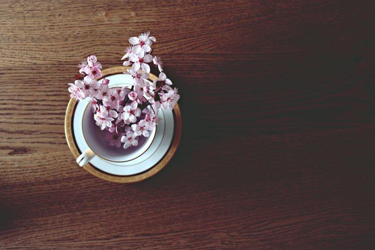 beautiful-bloom-blooming-371393